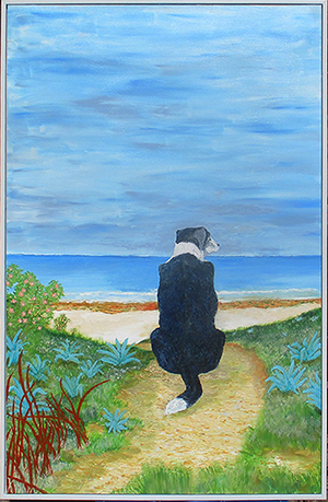 Jeff Quigley emu park artist old dogs beach