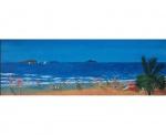 09-surf-beach-emu-park.jpg