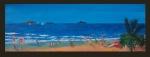 14 surf-beach-emu-park.jpg